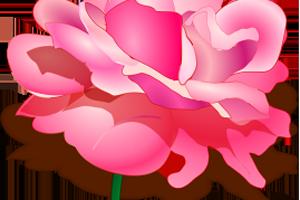 Uñas más resistentes con agua de rosas