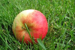 Leche y manzana para una piel suave