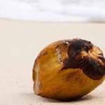 Aceite de coco para los pies con hongos